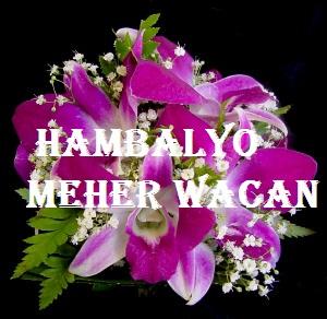 http://wajaalenews.net/wp-content/uploads/2014/06/HAMBALYO31.jpg